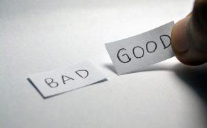 Good vs Bad Dog Food