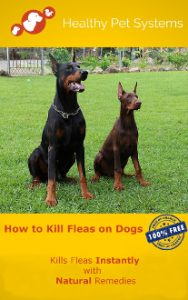 How to kill fleas on dogs HEALTHY PET SYSTEMS