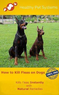 How to kill fleas on dogs? FREE GUIDE HEALTHY PET SYSTEMS