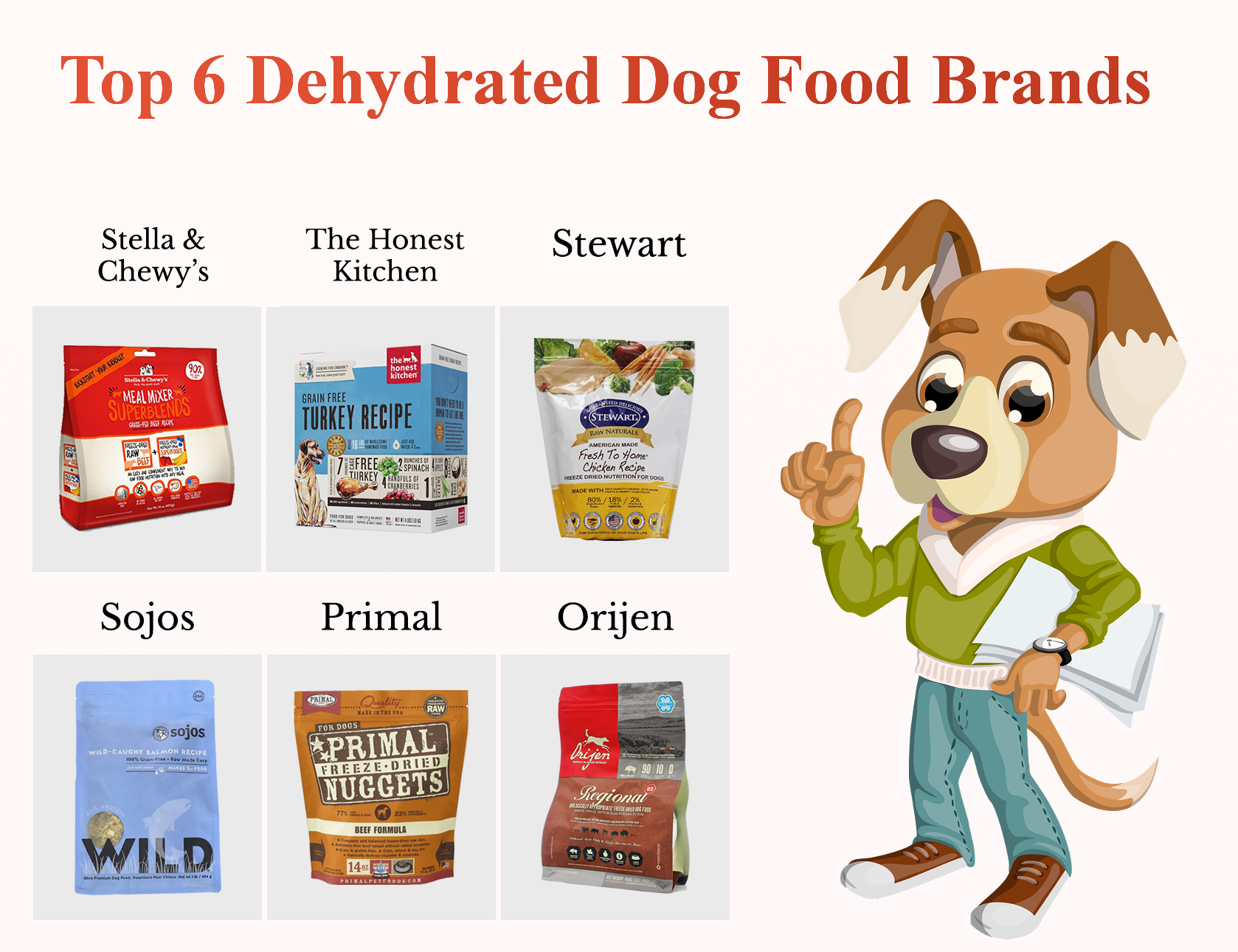 Top 6 dehydrated dog food brands