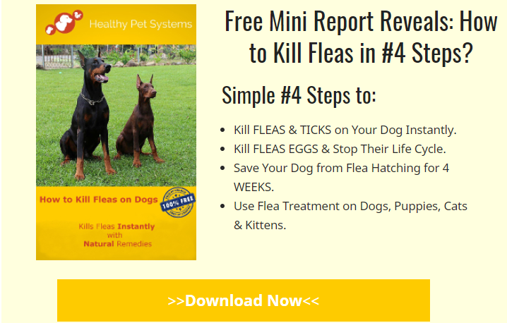 free report how to kill fleas on dogs